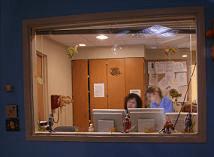 MRI observation window