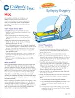 Magnetoencephalography MEG PDF