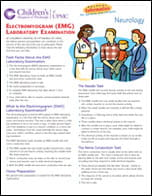 Electromyogram EMG Laboratory Examination PDF
