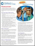 Trabeculotomy PDF