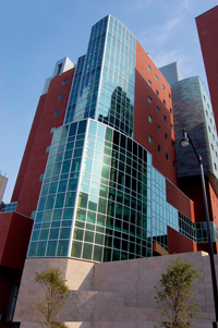Richard King Mellon Foundation Institute for Pediatric Research