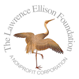 The Lawrence Ellison Foundation